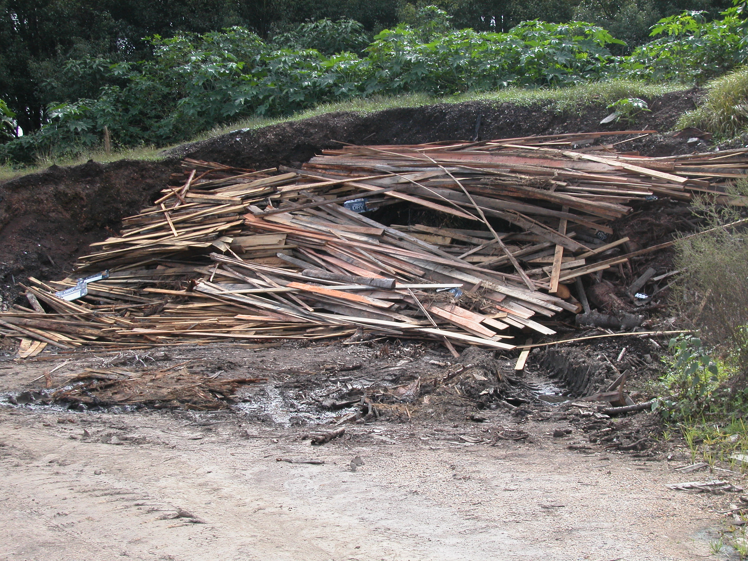 Wood Pile from UKI saw mill