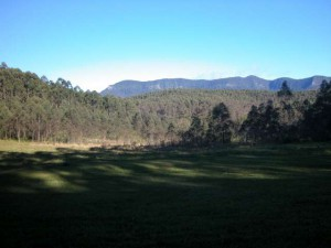 Biochar industries kunghur | view from the border ranges camp spot