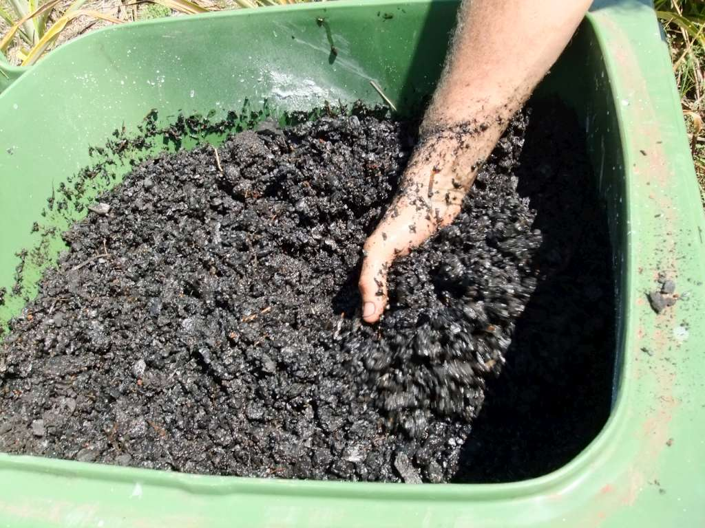 Lets look at this Olive enhancing Biochar Mix