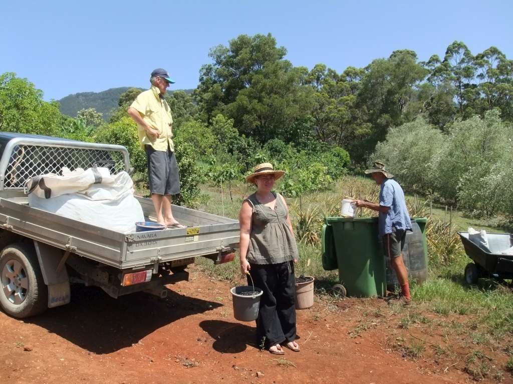 Olive tree biochar project helpers