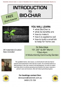 biochar introduction