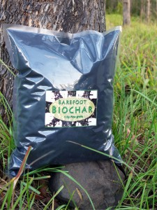 Biochar industry update. Biochar industries new products
