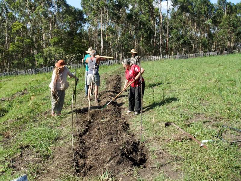 Making the trial beds in the hill of abundance garden