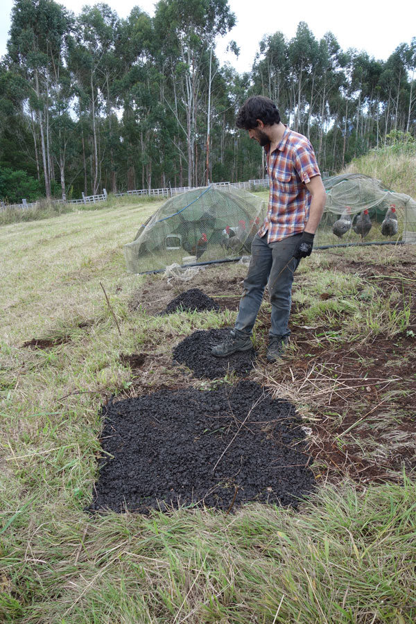a biochar trial spot with water