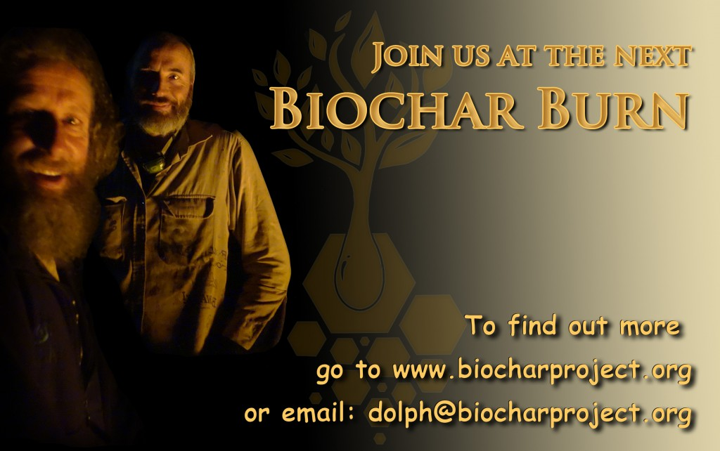 The biochar workshop card