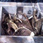 Fill the kiln with wood and cover up the retort ready for a top down fire. Biochar kiln by geoff moxam
