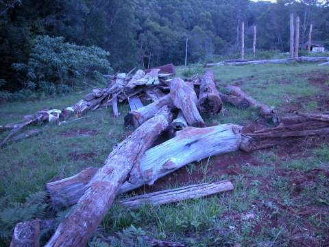 a picture of discarded wood at biochar industries kunghur education centre for biochar