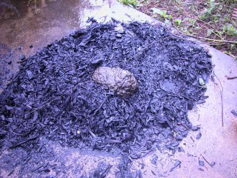 biochar natures balls nature shows what to do with biochar